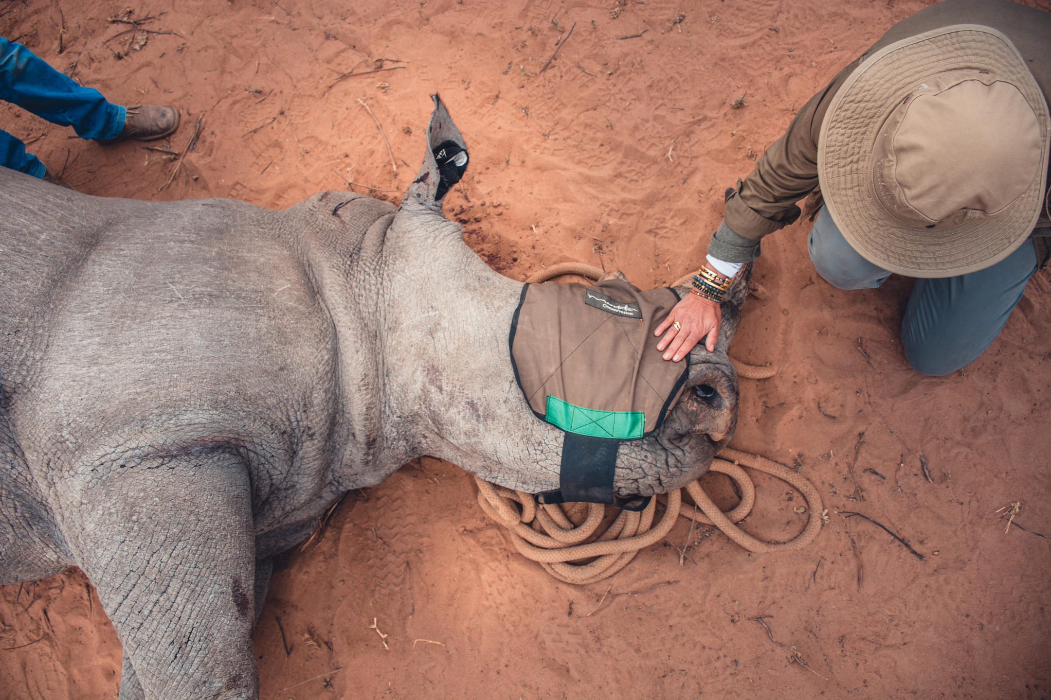 Marataba Conservation Camps has opened new retreats in a new section of the Marakele National Park in South Africa's Limpopo Province.