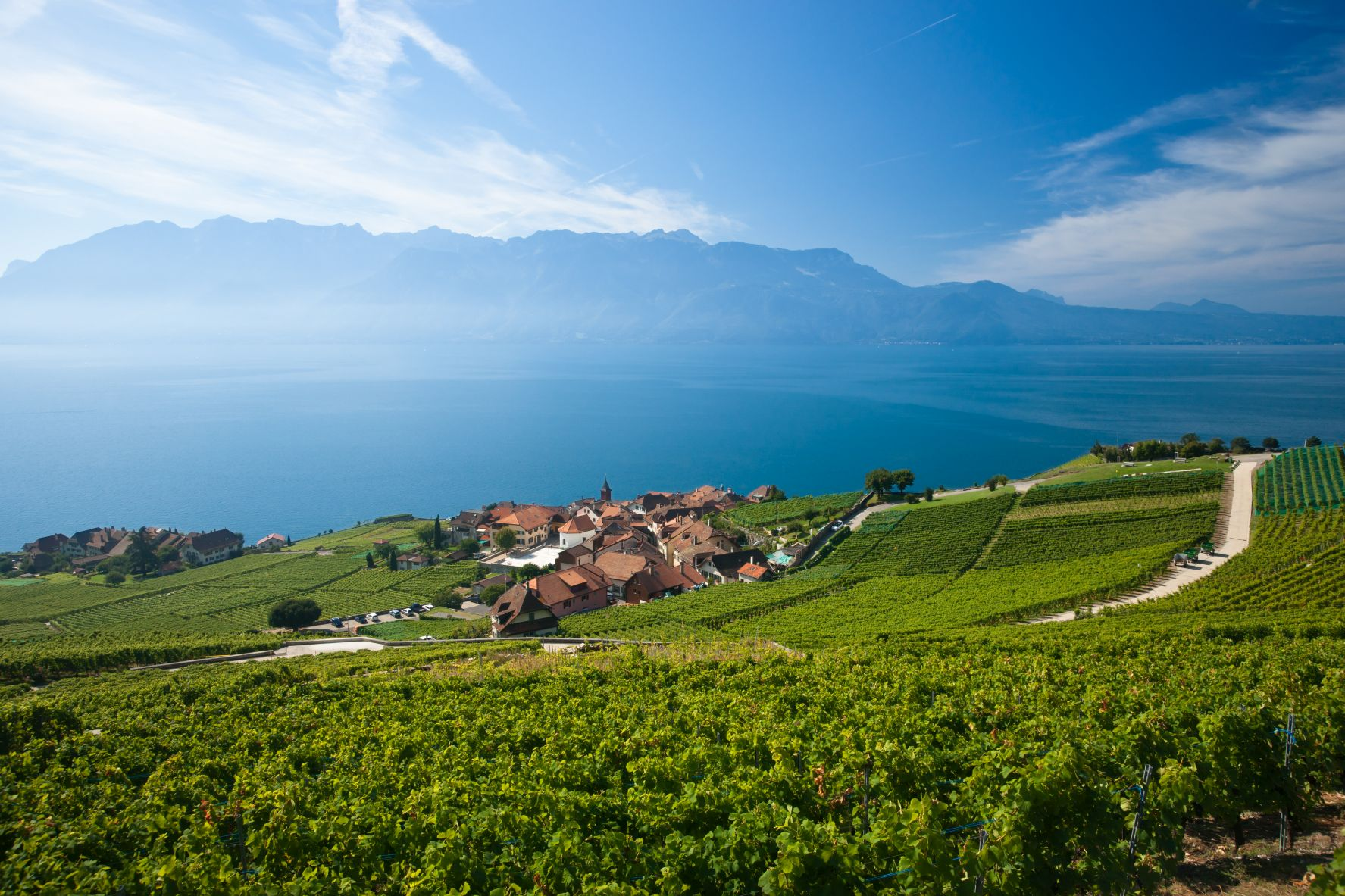 Nestled on the banks of Lake Geneva, in the French-speaking region of Vaud, the medieval city of Lausanne is famed for its 12th-century Gothic cathedral, its 19th century Palais de Rumine, and its cutting-edge gastronomy. An all-year playground, this ancient city has a little something for everyone.