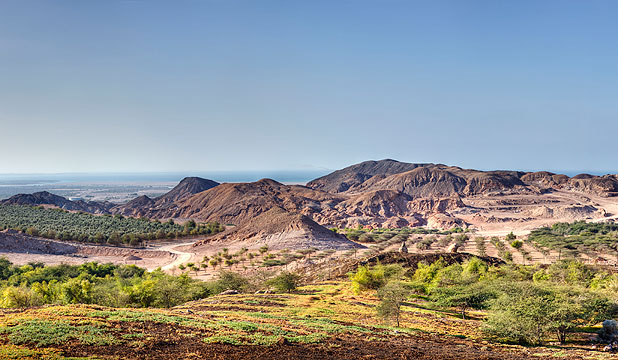 Abu Dhabi's founding father had a vision for his private royal retreat on Sir Bani Yas Island, and years later, his legacy – and his hopes for the future – are reaching fruition.