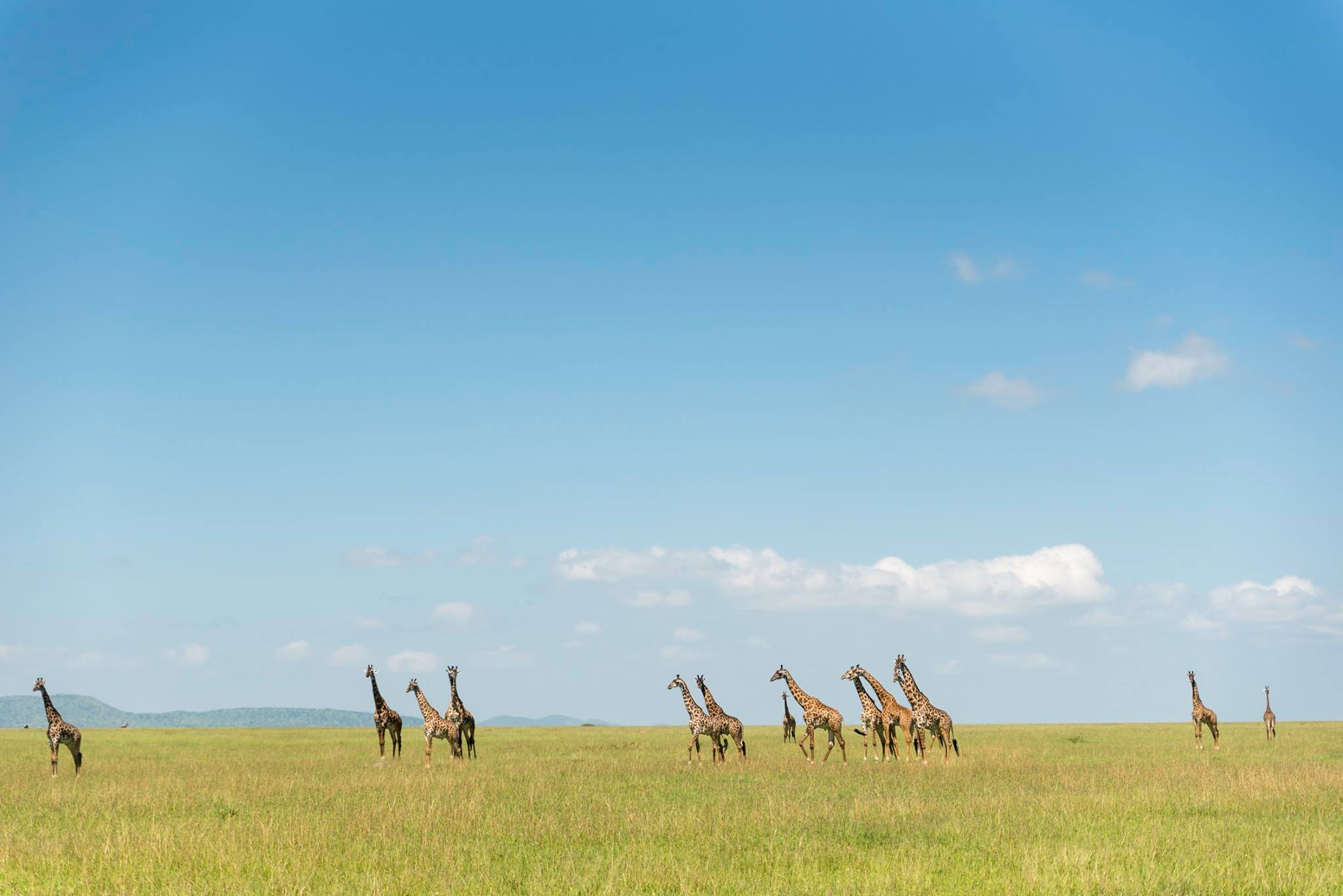 Conservation-led luxury travel company andBeyond continues to 30th-anniversary celebrations with a fresh batch of limited edition itineraries ranging from India to Africa.